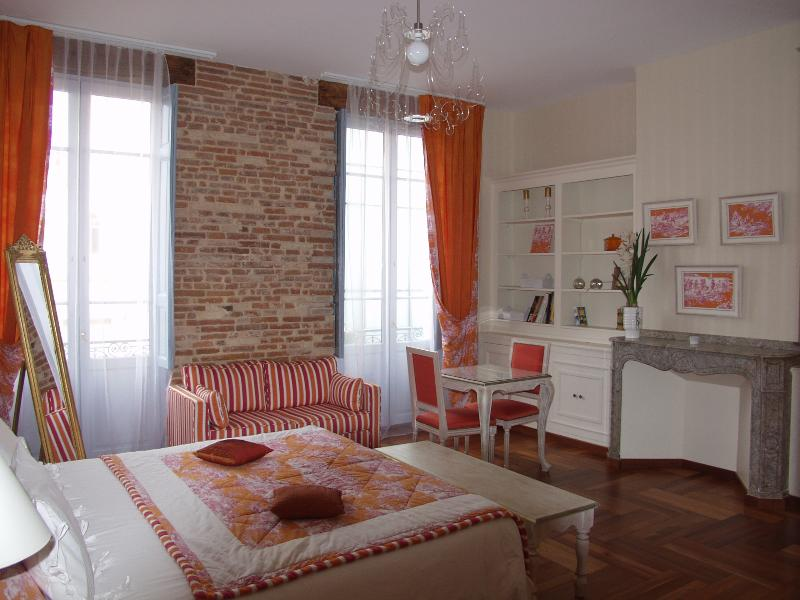 Room Capitole - Luxurious  appartement in the heart of Toulouse, B&B possible - Toulouse - rentals