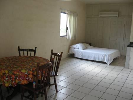 Spacious Studio Apartments, 5 blocks from downtown - Image 1 - Cabo San Lucas - rentals
