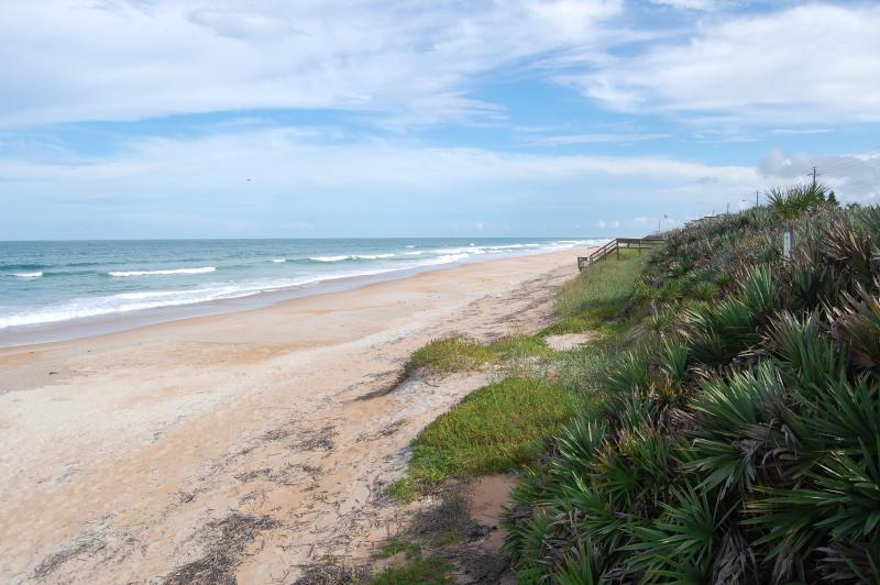Enjoy the quiet beauty of the ocean on a traffic-free beach - Mako Beach Surf House - with garage & pool - Ormond Beach - rentals