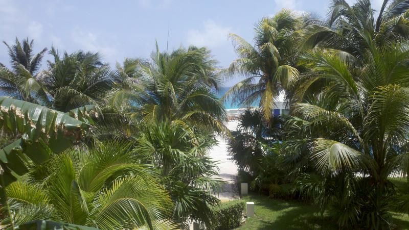 Garden & Ocean View - Oceanview Condo - Cancun, MX - Cancun - rentals