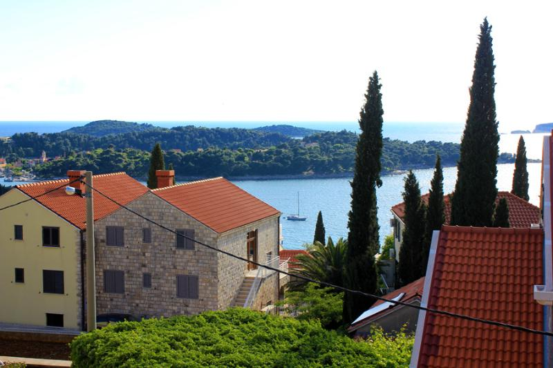 View from the balcony - Holiday flat Vlaho near Cavtat - Cavtat - rentals