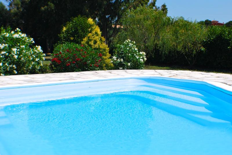 The Pool (with salt system, no chlorine) - Large Lakefront Villa near Rome, Private Pool - Trevignano Romano - rentals