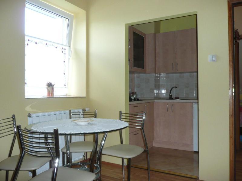 Apartment - Image 1 - Delnice - rentals