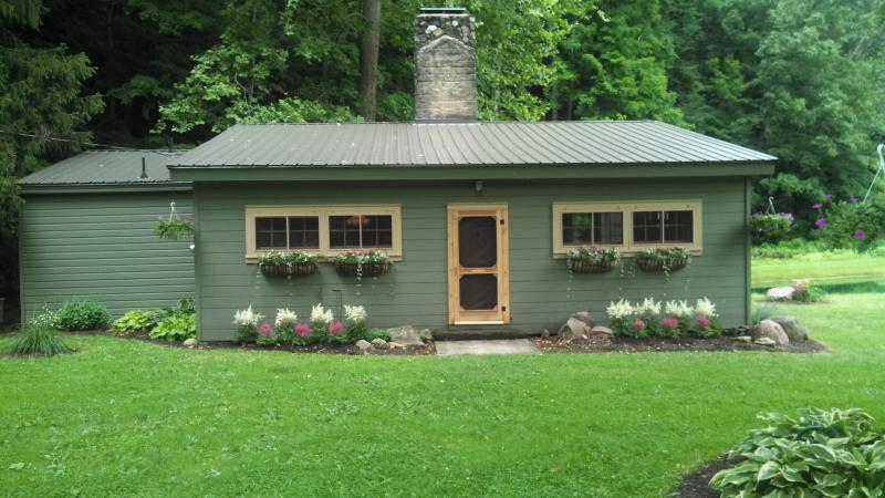 Hidden Valley Cabin 60 Acres/Pond/Creek/Waterfalls - Image 1 - Wooster - rentals