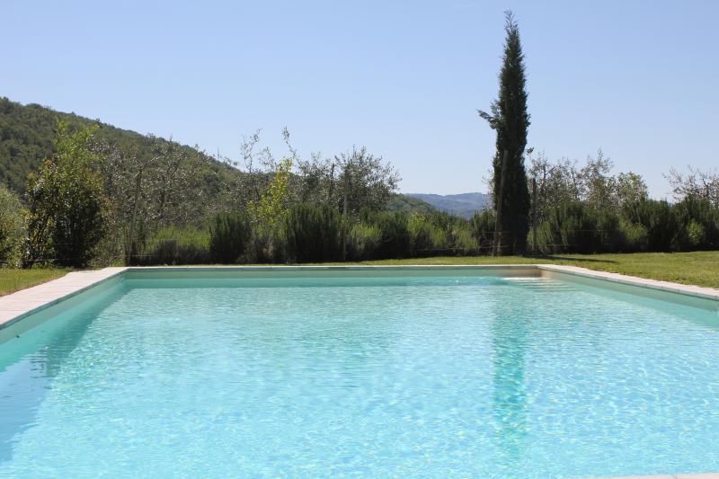 The swimming pool - Villa Fontecaresino 1 - Gaiole in Chianti - rentals
