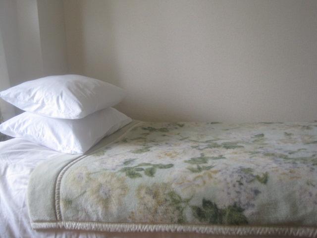 Sleeps 4 best price great location Shinjuku Tokyo - Image 1 - Shinjuku - rentals