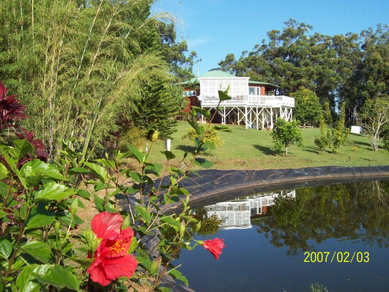 Pond and main House - Secluded get away up- country Big Island of Hawaii - Honokaa - rentals