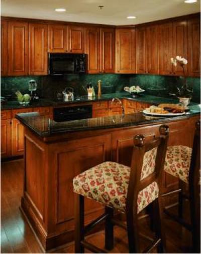 Ritz Carlton Club Aspen Colorado - Image 1 - Aspen - rentals