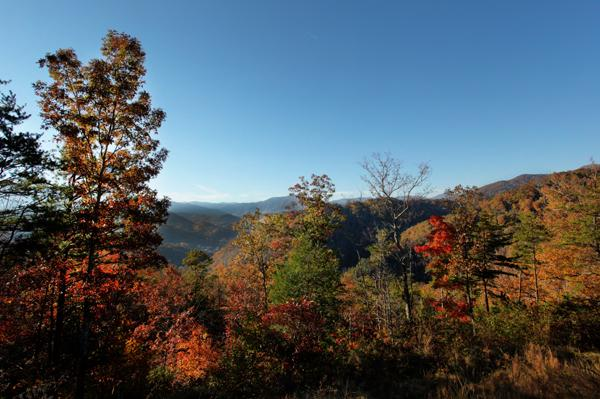 color change - Westgate Smoky Mts in Oct. 2014 (Gatlinburg, TN) - Gatlinburg - rentals