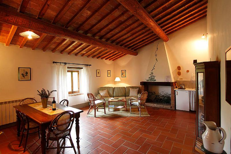 the sitting room - VERDE - tuscan country house with  pool - San Casciano in Val di Pesa - rentals