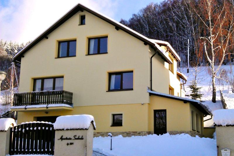 Apartman Svoboda in the Giant mountains - Apartment Svoboda (luxury in the Giant mountains) - Svoboda nad Upou - rentals