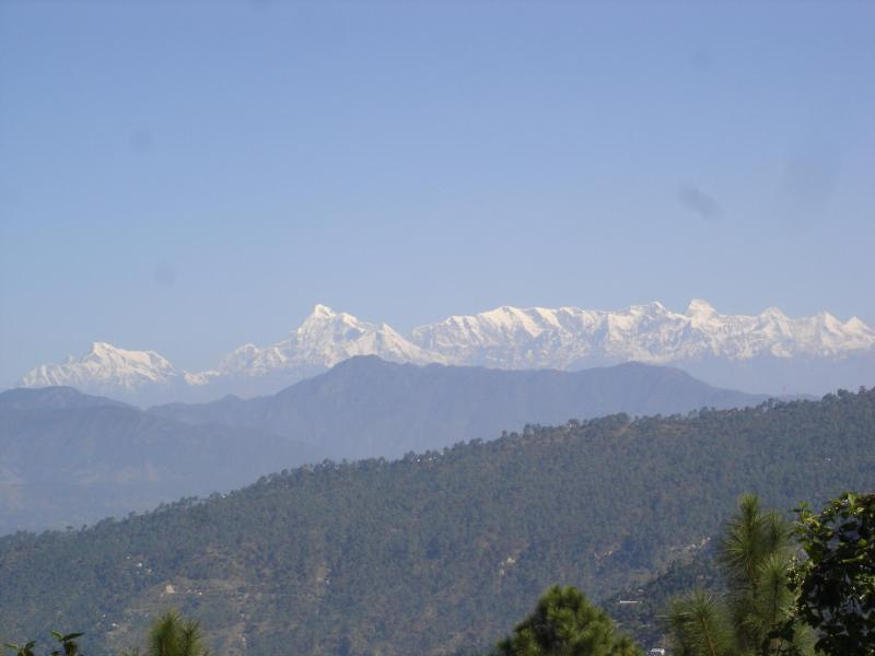 Snow Peak views from Marigold Cottage - Marigold Cottage- Bliss, peace  and happiness. - Ranikhet - rentals
