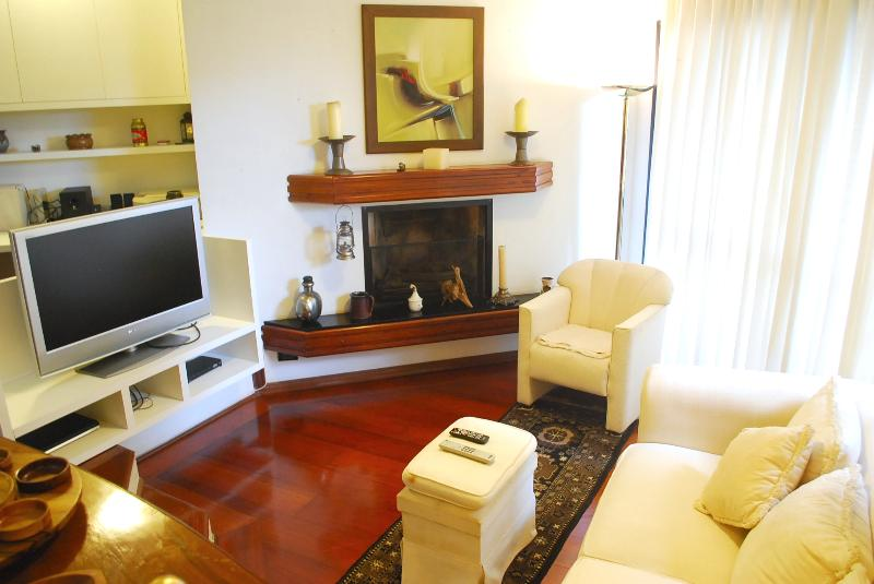 fireplace, lcd tv 40, dvd, woodfloor, cable tv, wifi broadband internet. - Charming 2 ensuites apartment in the best area! (BATEL) - Curitiba - rentals