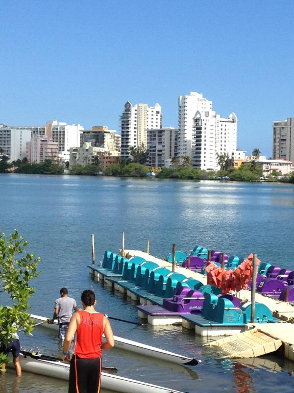 Beautiful morning at the Condado Lagoon! - City Oasis By The Lagoon - San Juan - rentals