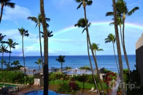 Hale Ona Loa #310 - Oceanfront Fully Renovated - One Bedroom / One Bath - Image 1 - Lahaina - rentals