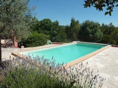 Swimming Pool - GREAT HOLIDAYHOUSE IN THE SOUTH OF FRANCE 6 till 14 persons - Flayosc - rentals
