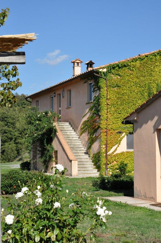 MAIN HOUSE - Podere San Giacomo - San Casciano dei Bagni - rentals