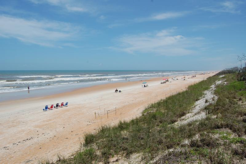 Gorgeous, traffic-free beach - Mako Beach Dolphin House - with garage & pool - Ormond Beach - rentals
