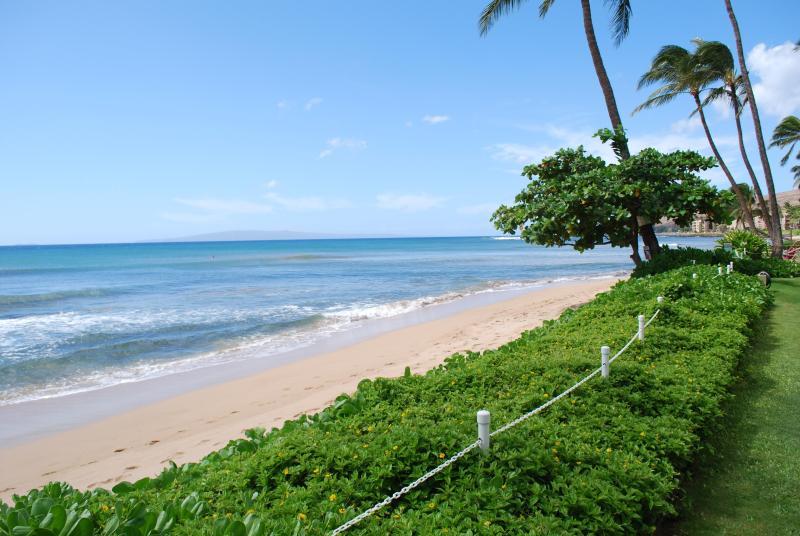 Beach in front of condo - BEACH FRONT MAALAEA MAUI - Makani A Kai - Maalaea - rentals