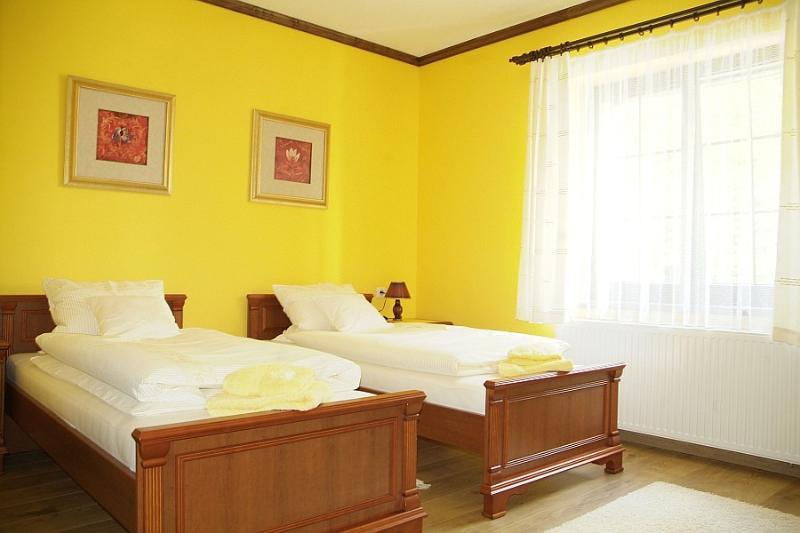 Room 1 - Amazing Apartement - Frydek-Mistek - rentals