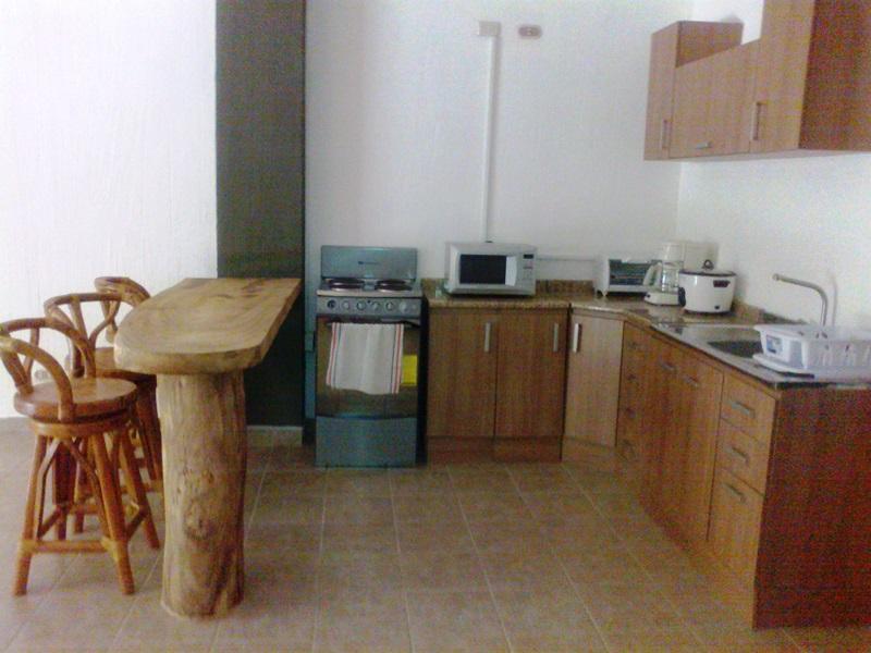 One bedroom apartment in Ocotal Beach - Image 1 - Playa Ocotal - rentals
