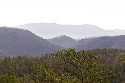 ALL ABOUT THE VIEW - Image 1 - Sevierville - rentals