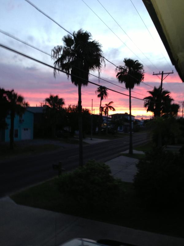 Palm Trees in Paradise Villa # 1 - Image 1 - Port Aransas - rentals