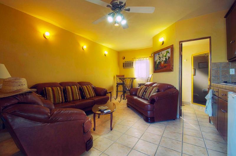 Living area - Comfortable Executive Downtown 1-Bedroom Condo - Cabo San Lucas - rentals