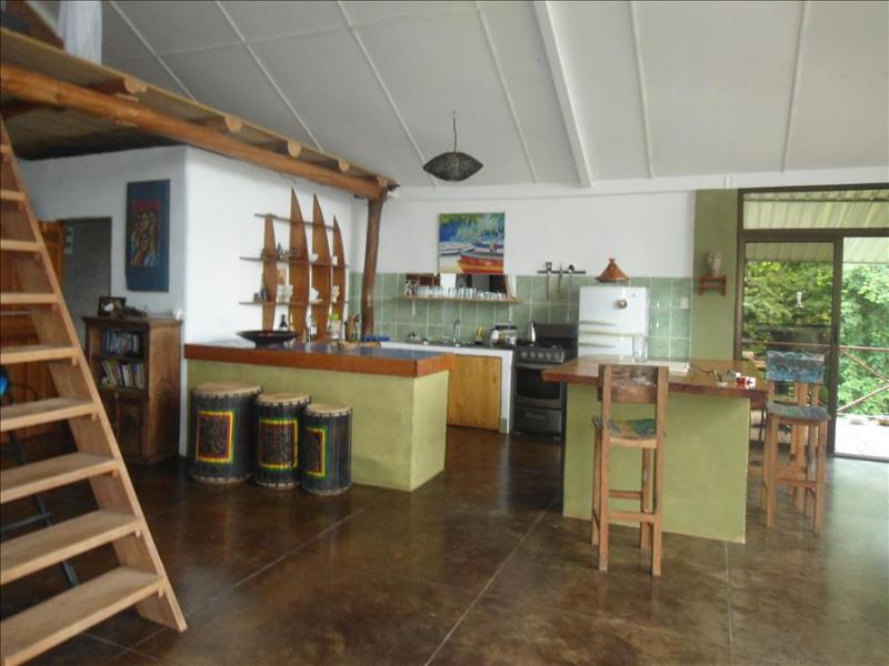Jungle House - Image 1 - Nosara - rentals