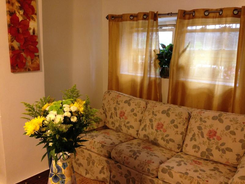 Living Room - Brooklyn's Hidden Gem ~ 2 Bedroom Apartment - Brooklyn - rentals