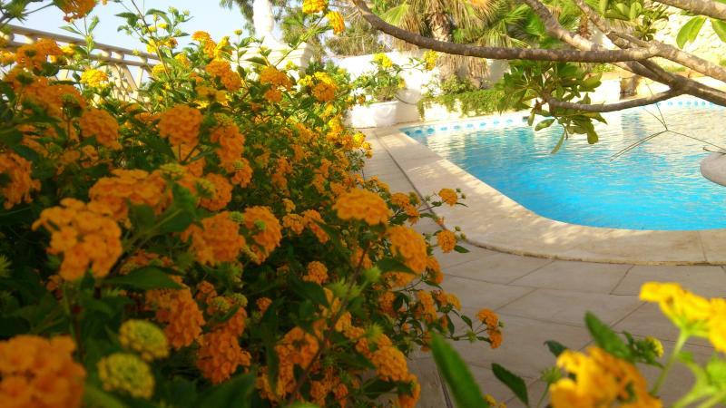 A Mediterranean feel - Blu Waters Lux Villa Mellieha - Mellieha - rentals