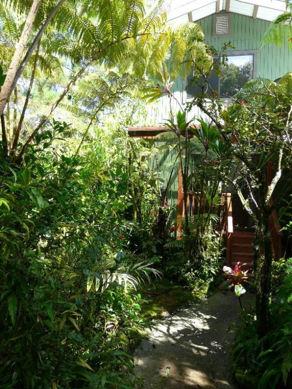Tropical Garden Setting - A Sweet Tropical Ohana - Pahoa - rentals