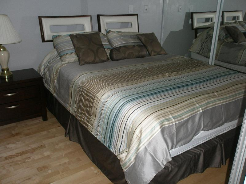 Luxurious Queen Size Bed Matching Dresser - Furnished Suite Downtown Toronto Better Than  Hotel - Toronto - rentals