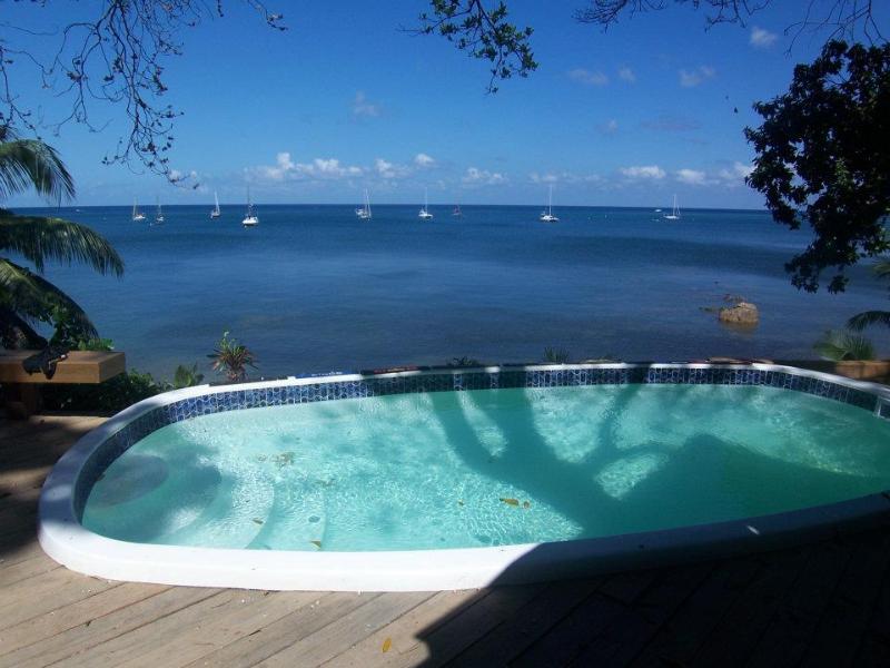 Ocean front pool - West Bay Beach Front Crabby Cabin Ocean view - Roatan - rentals