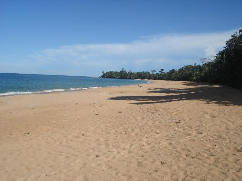 Beautiful Bluff Beach just a minute walk away - EcoCabin a few steps from breathtaking Bluff Beach - Isla Colon - rentals