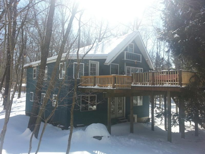Let it Snow! - PRIVATE ARROWHEAD CHALET..HUGE GAME ROOM..FIRE PIT - Pocono Lake - rentals