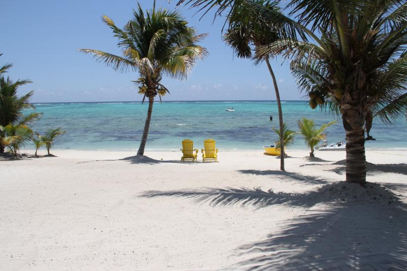 Beautiful beach - Beachfront To A Breathtaking Crystal Clear Turquoi - Tulum - rentals