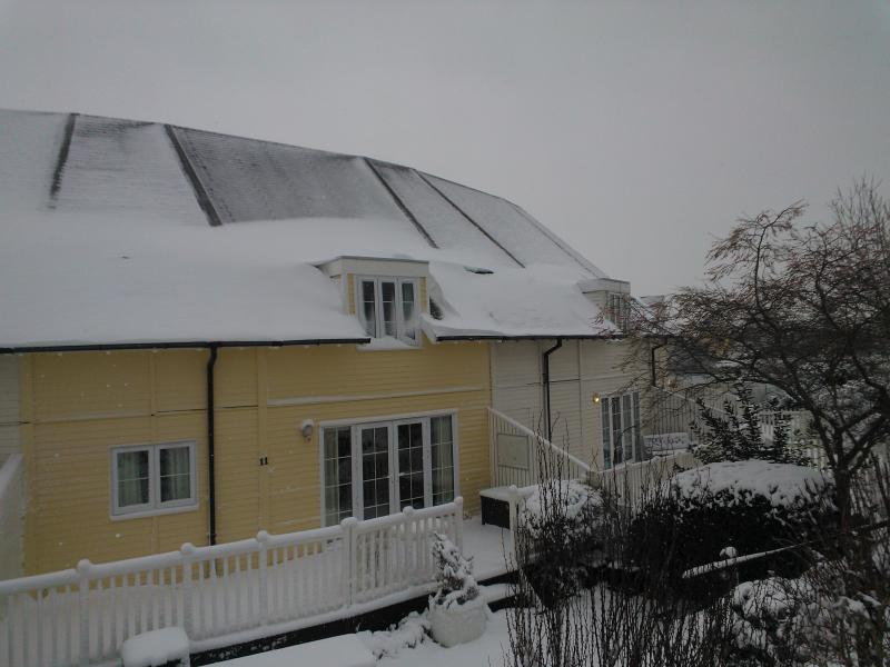 Cotswolds in Winter - Lovely Lakeside Lodge in The Southern Cotswolds - Cirencester - rentals