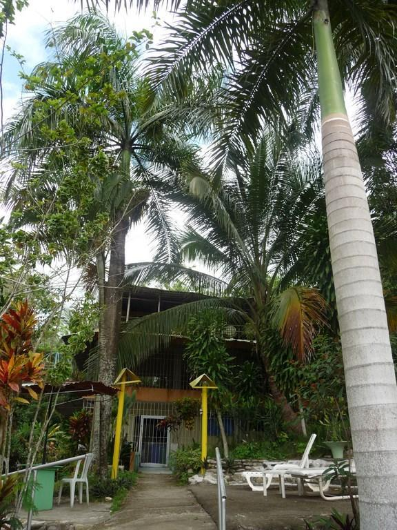 Cultural Immersion in a safe Cottage, private Domain - Image 1 - Puerto Plata - rentals