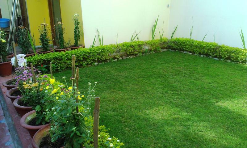Terrace Garden - One BHK Serviced Apartment SA1 for rent in Lucknow, India with Modular Kitchen - Lucknow - rentals