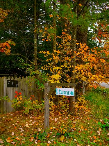 Evergreen is gorgeous in the autumn! - Evergreen- Romantic & Cozy Getaway 3hrs From Nyc! - Caroga Lake - rentals