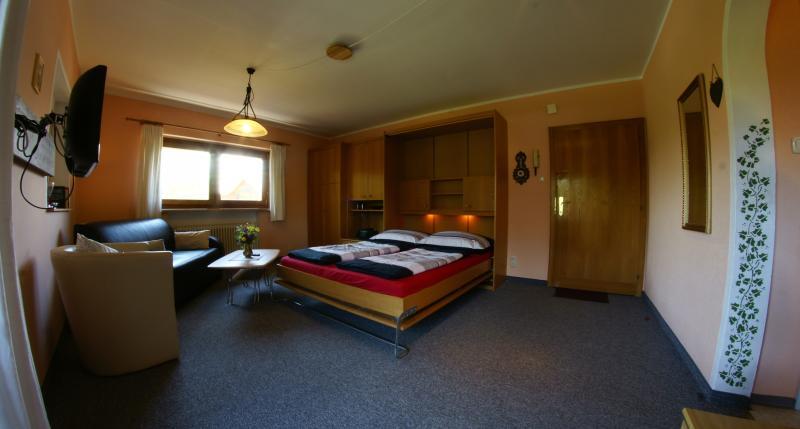 Landhaus Kitzbichler Apartment 3 - Image 1 - Niederndorf - rentals