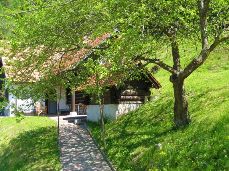 The front view and entrance to the chalet - Romantic chalet in the countryside - Slovenia - rentals