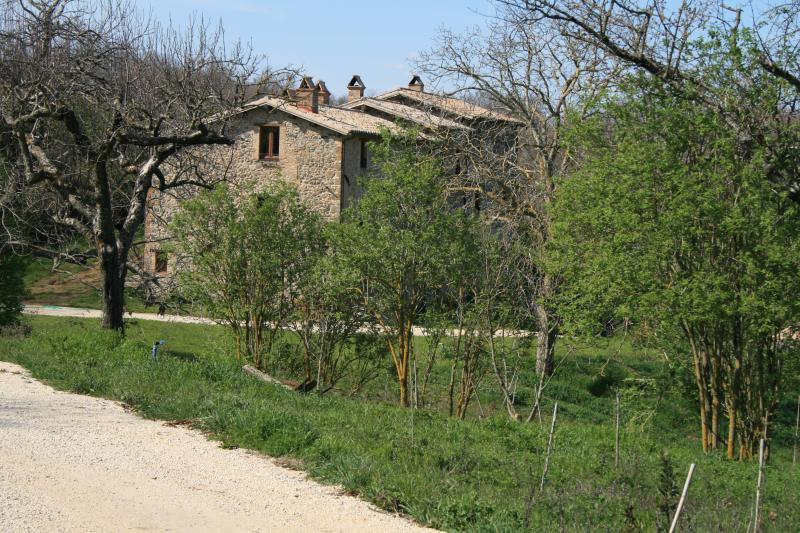 CASALE VIGNOLO ...your country house in Italy... - CASALE VIGNOLO, La Casa - Orvieto - rentals