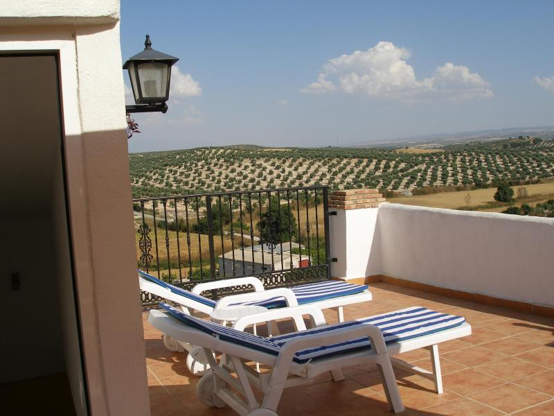 Rooftop terrace views of Sierra Nevada - Tranquil retreat village house superb views - Bracana - rentals