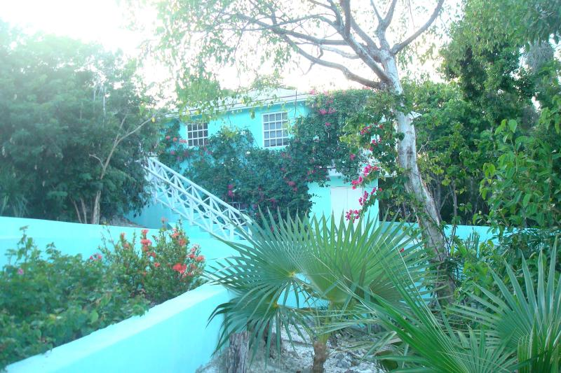 THE TREE HOUSE .... A COZY NEST ...... WITH A BEACH! - The Tree House - George Town - rentals