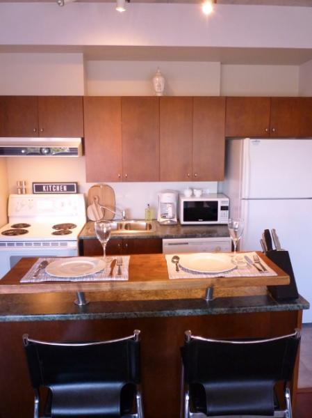 Open concept living, kitchen and dining area - York - Best location in Ottawa - Downtown - Ottawa - rentals