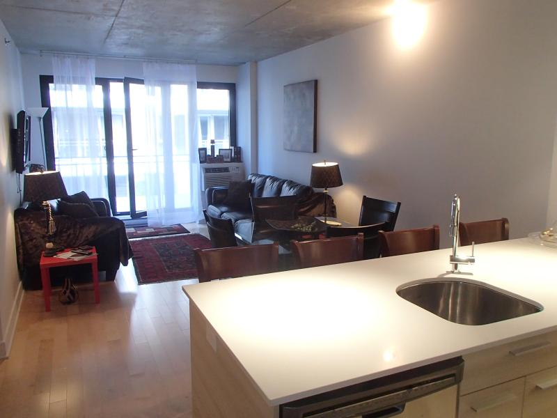 Brand New!!! - Great Brand New 2B in Griffintown with parking! - Montreal - rentals