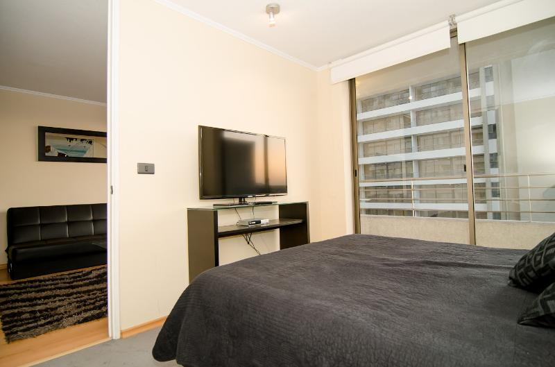 Luxury apartment in Bellavista! - Image 1 - Santiago - rentals