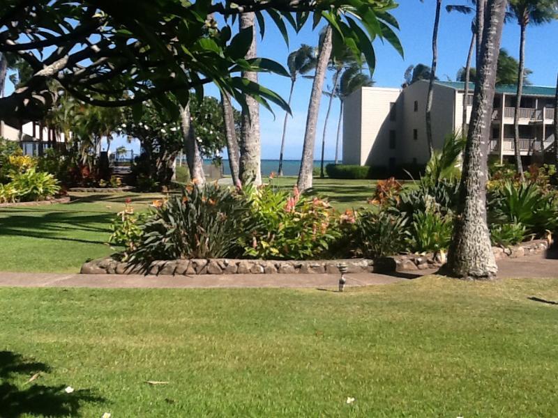 Courtyard and walking paths - BEAUTIFUL 1 BEDROOM CONDO, SLEEPS 2 - Kaunakakai - rentals